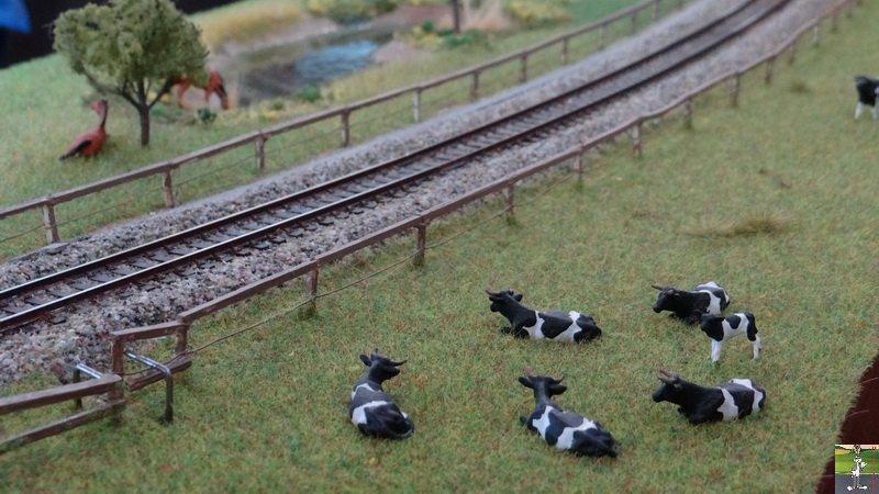 [VD - CH] 2014-10-18 : Rail Expo - Nyon 2014-10-18_rail_expo_nyon_22