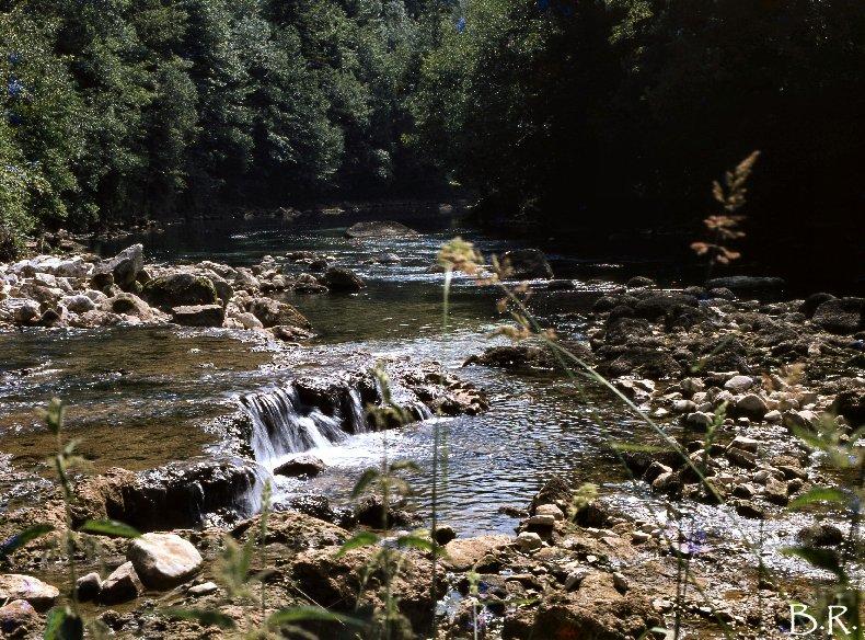 Le Ravin Mathieu, la Rivière d'Ain 0004
