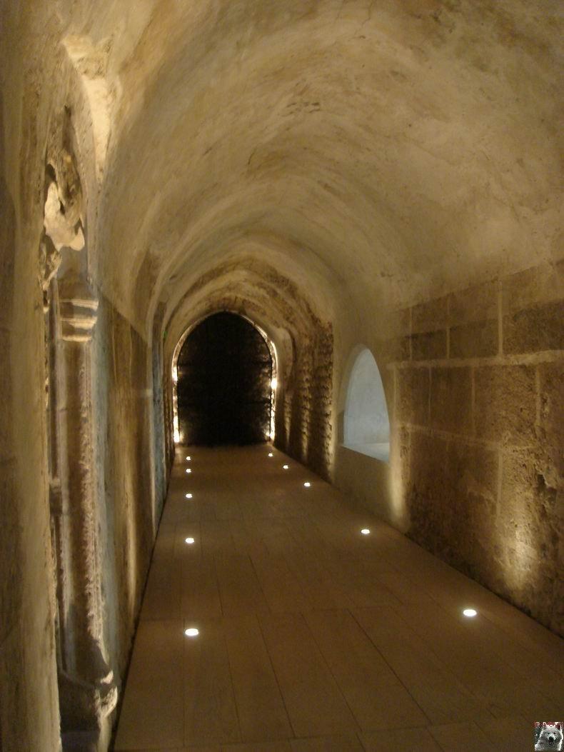 Le Musée de l'Abbaye - Donations Bardone-Genis - St-Claude 0023