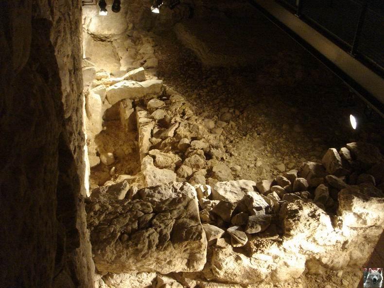 Le Musée de l'Abbaye - Donations Bardone-Genis - St-Claude 0025
