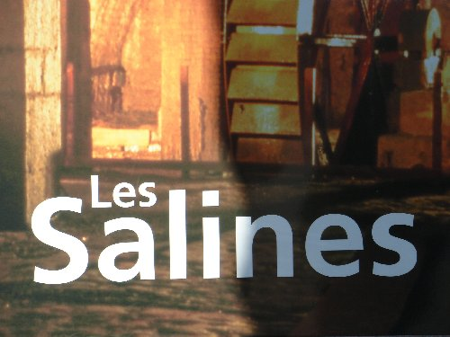 Les Salines de Salins les Bains (39) 0007