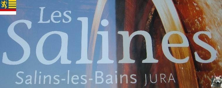 Les Salines de Salins les Bains (39) Logo