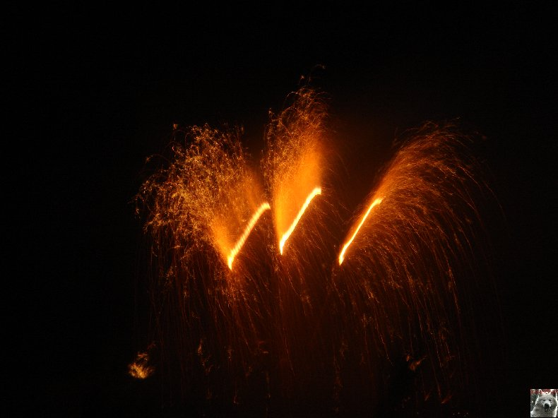 L'incinération du Roi des Souffl's 2009 - 28/03/2009 (39) 0001