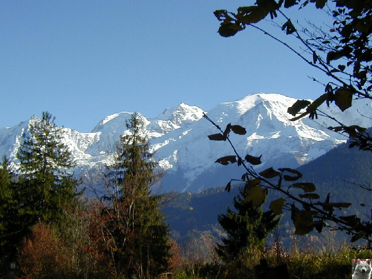 Pour la beauté des lieux et la richesse des images - Le toit des Alpes 0001
