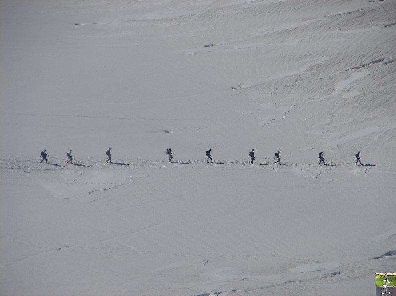 Pour la beauté des lieux et la richesse des images - Le toit des Alpes 0123