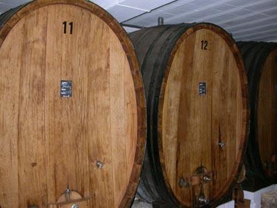 Le vignoble côté Léman (VD) 0003f