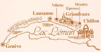 Le vignoble côté Léman (VD) 0018
