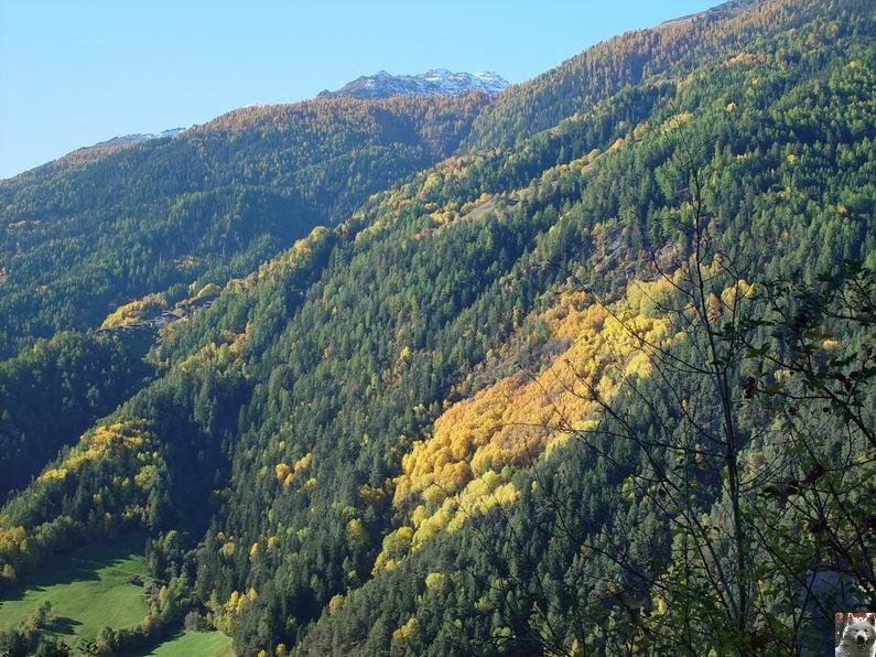 Le Val d'Annivier - Suisse - VS - 15 octobre 2005   0005