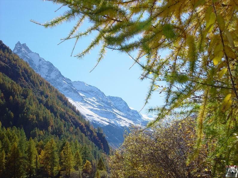 Le Val d'Annivier - Suisse - VS - 15 octobre 2005   0024