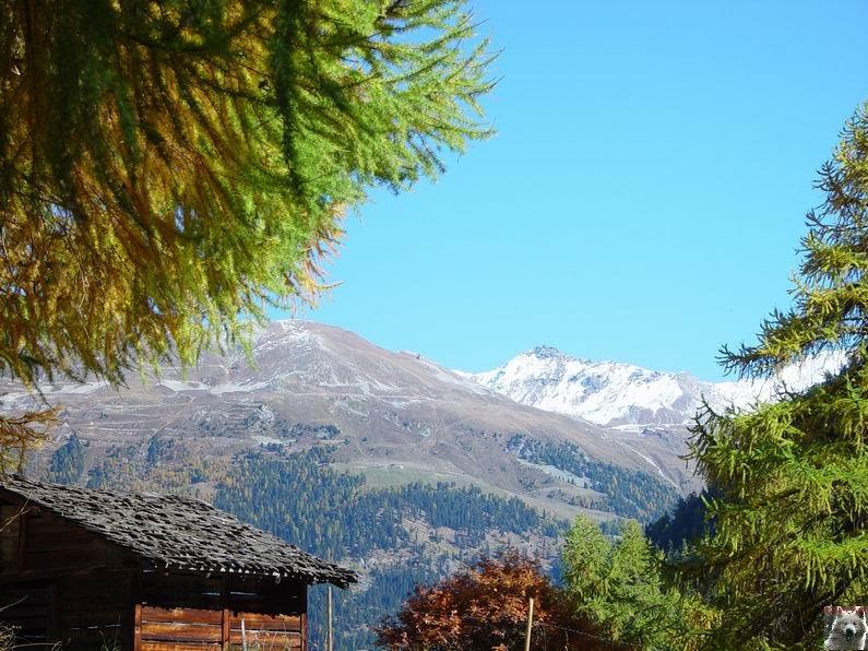 Le Val d'Annivier - Suisse - VS - 15 octobre 2005   0026