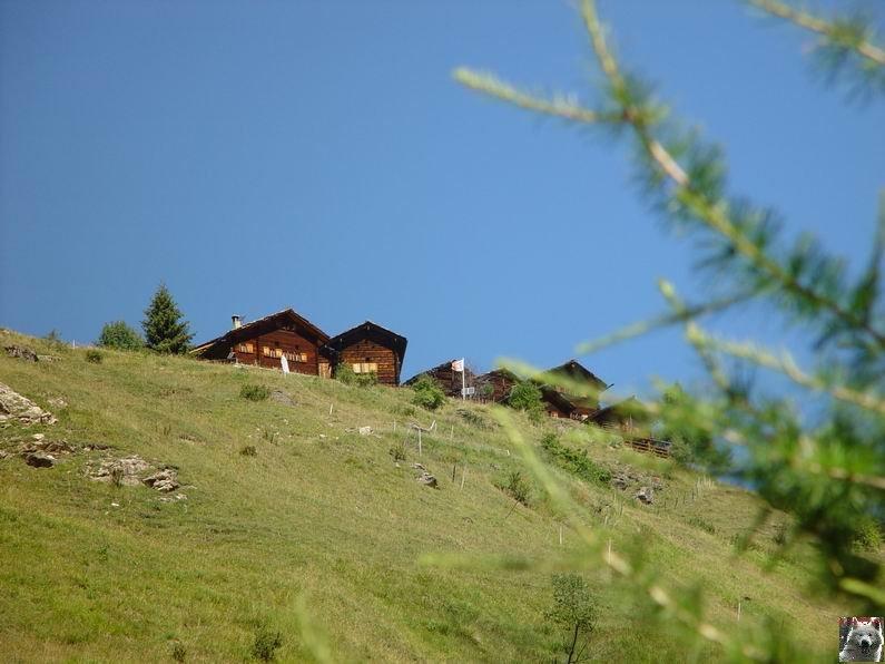 Le Val d'Hérens - Suisse - VS - 09 août 2005  0017