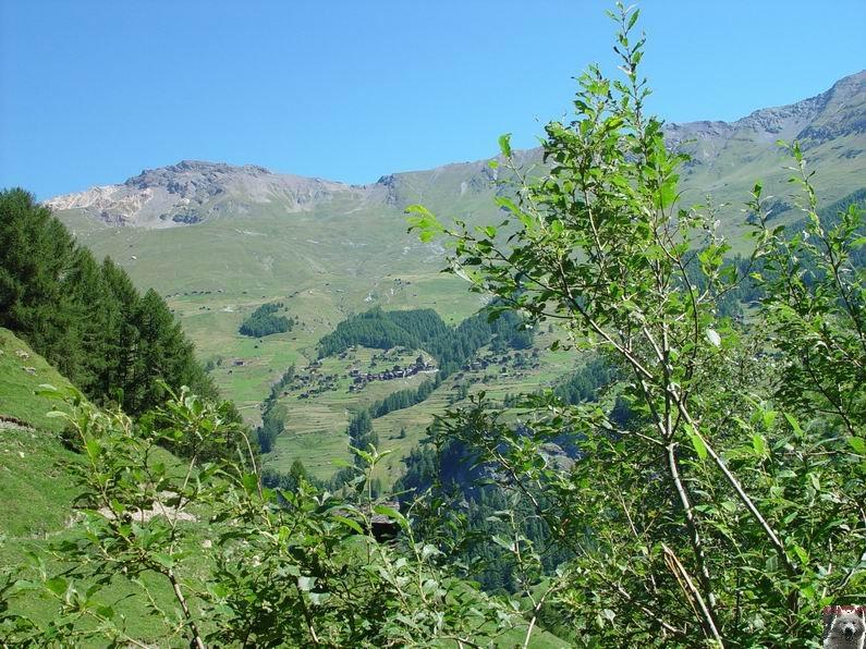 Le Val d'Hérens - Suisse - VS - 09 août 2005  0019