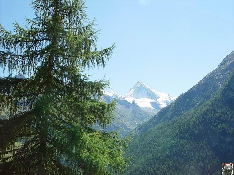 Le Val d'Hérens - Suisse - VS - 09 août 2005  0022