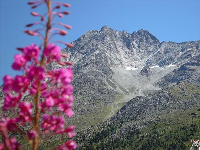 Le Val d'Hérens - Suisse - VS - 09 août 2005  0027