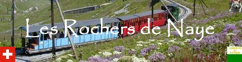 Les Rochers de Naye (VD) Logo